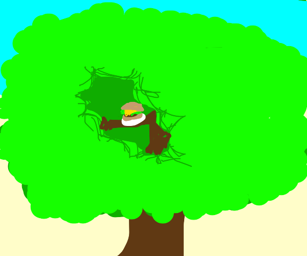 Eating a borgor in a tree