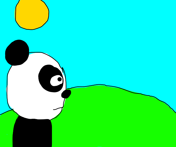 Panda longingly stares into the distance