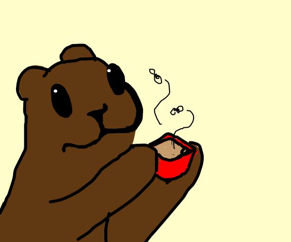 Bear has no money