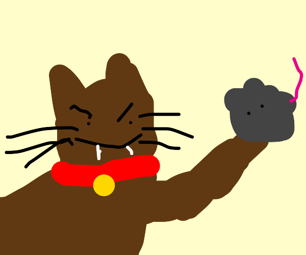 Drawcat that got the mouse