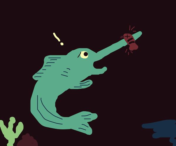 Surprised swordfish