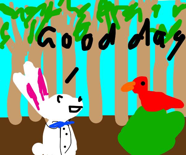 rabbit greets bird in forest