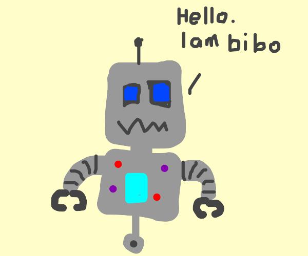 Robot named bibo