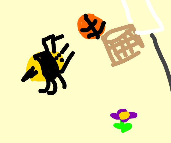 Bees playing Basketball