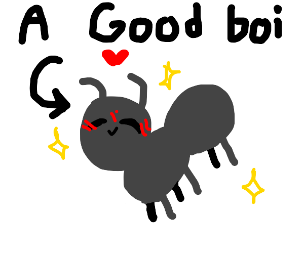 good ant boy