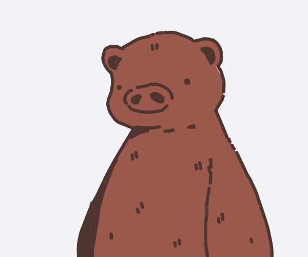 Bear-Pig