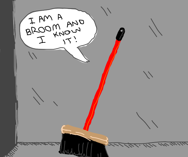 Broom is absolutely sure it's a broom