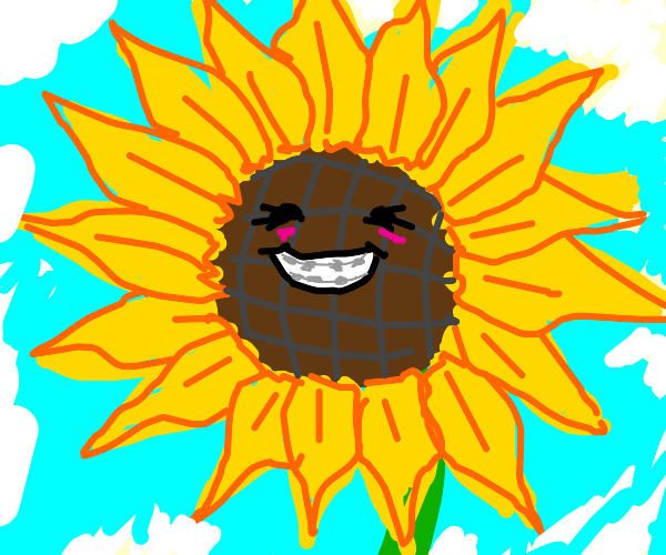 a sunflower with braces