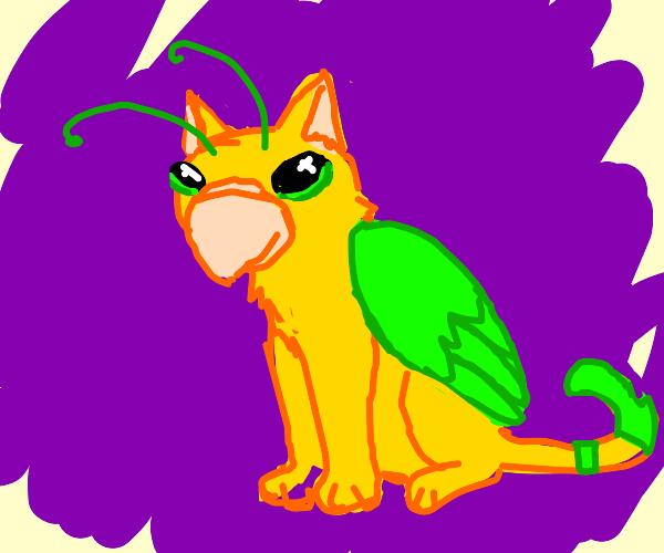 Alien cat bird