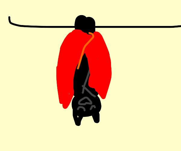 Bat sleeps with a red blanket