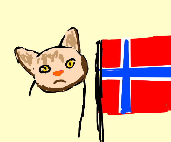 Cat waves the flag of Norway