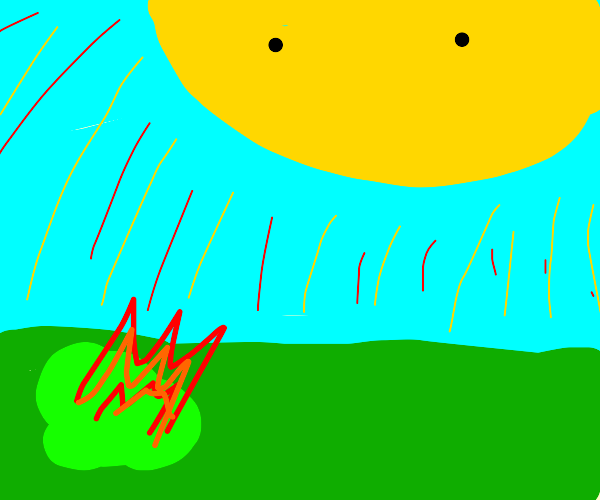 the sun very strong..