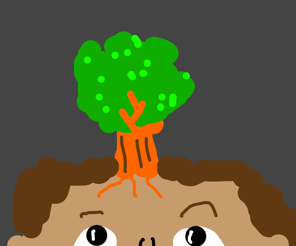 Tree grows on someone's head