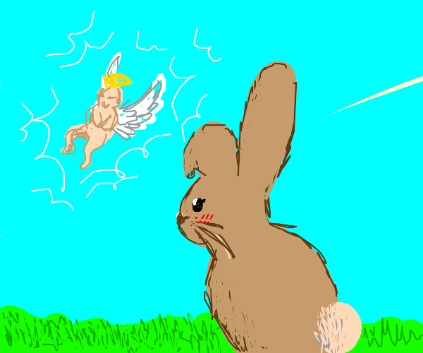 bunny witnesses birth of an angel