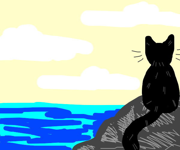 A black cat sitting on a rock