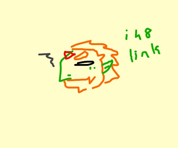 Ganondorf, king of thiev  e      s