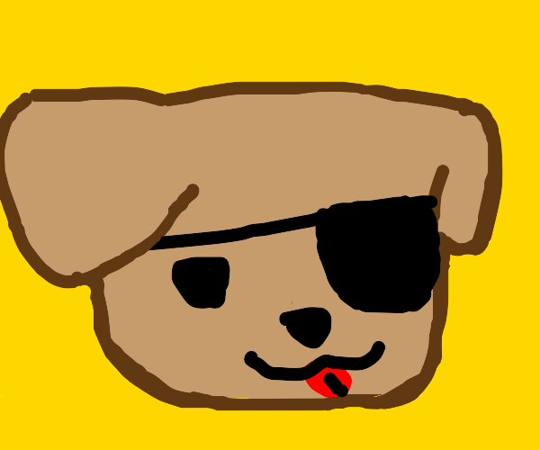 Dog with an eyepatch