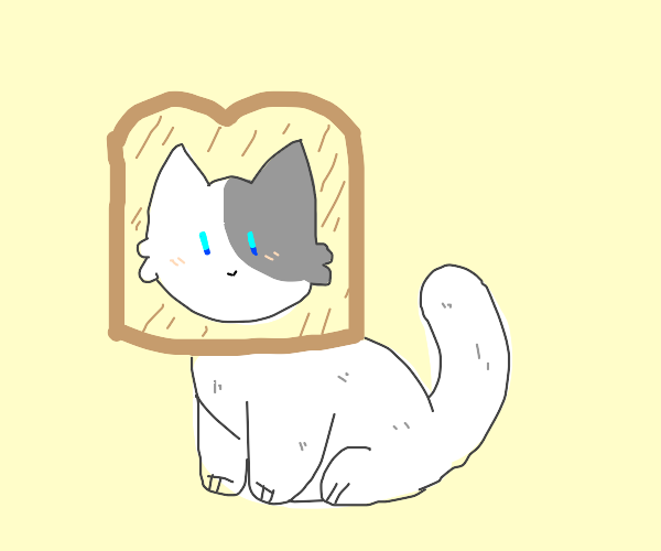 cute bread cat SOO CUTE