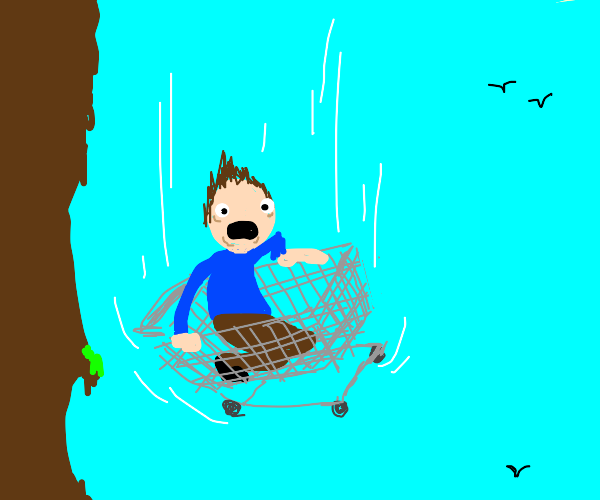 Guy falls with shopping cart
