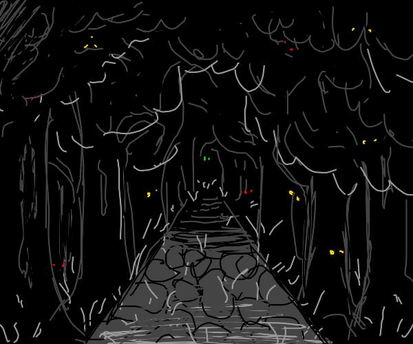 Dark, foreboding forest