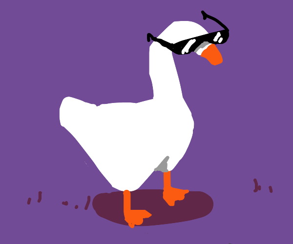 Untitled goose WITH SUNGLASSES