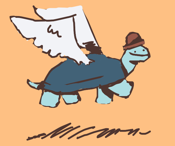 flying hat turtle