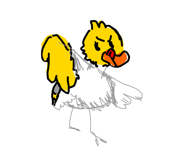 Duck drawing the rest of his body