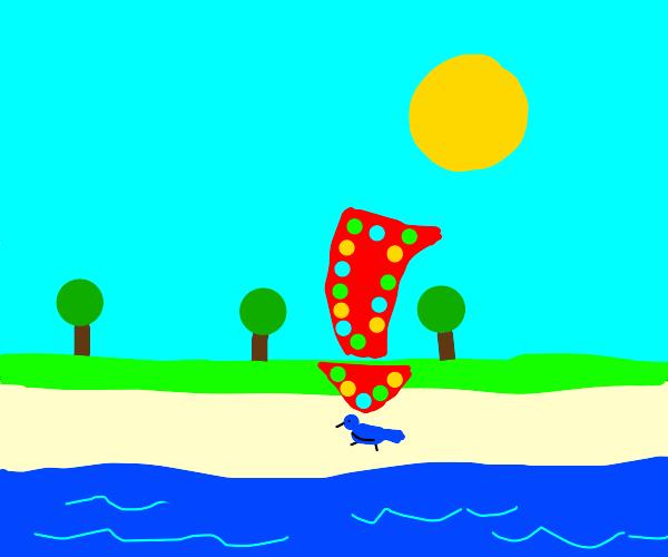 Blue bird on the beach