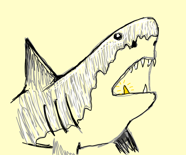 shark with gold tooth