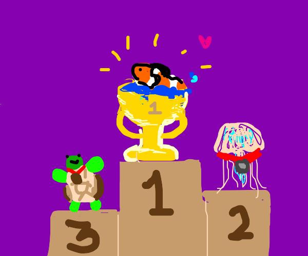 Clownfish wins 1st place