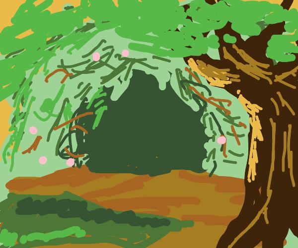 A Dark Grove