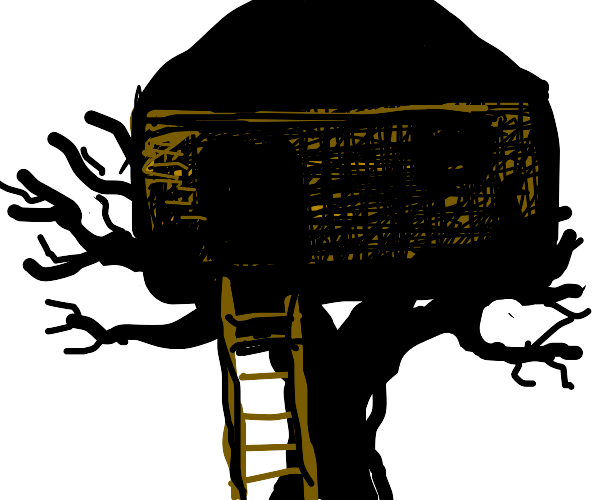 House on top of tree