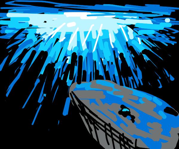 Whale swimming upward, viewed from underwater