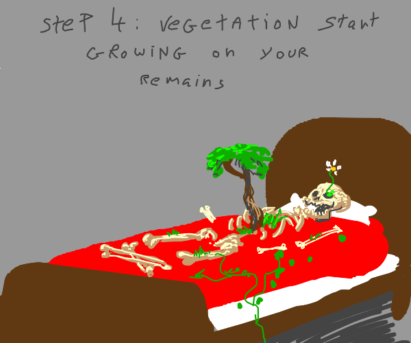 step 3: decompose in your bed