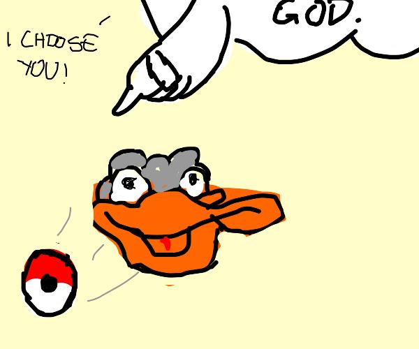 bird is chosen by g o d.