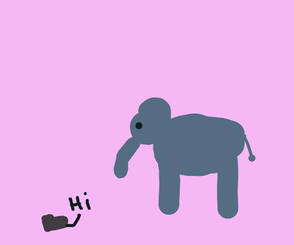 """Shoe says """"Hi"""" to elephant"""