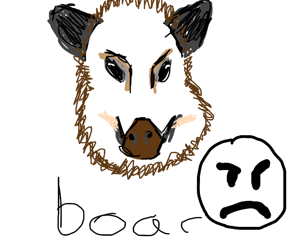 Angy boar
