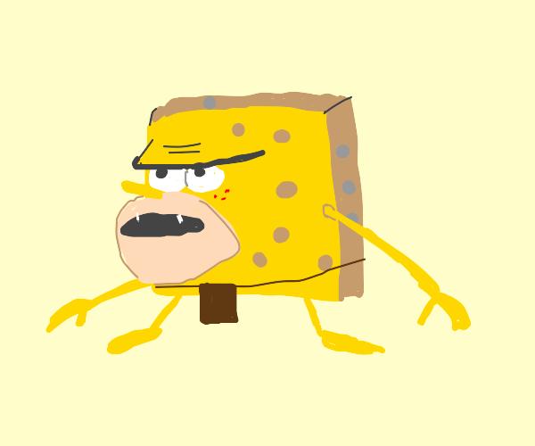 primitive sponge (meme)