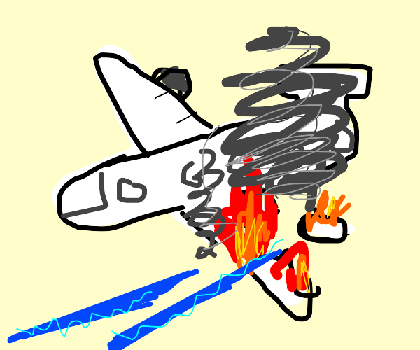 Plane's left wing is destroyed