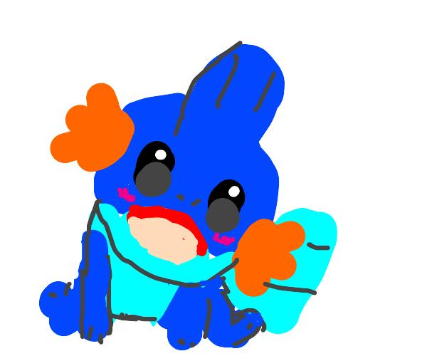cute mudkip