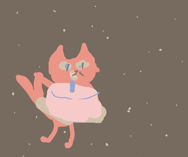 Space cat with a cake