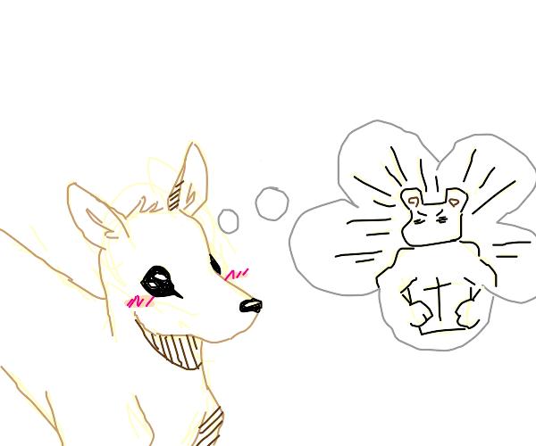deer staring longingly at beer