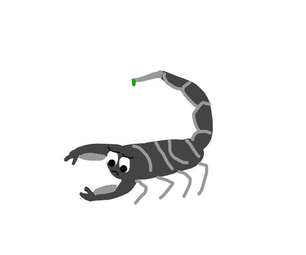 sad scorpion
