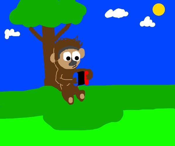 Monkey playing Nintendo switch