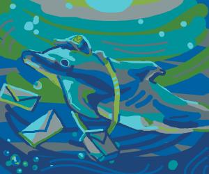Dolphin Marine Postal express