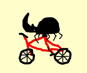 Rhinoceros beetle riding a bicycle