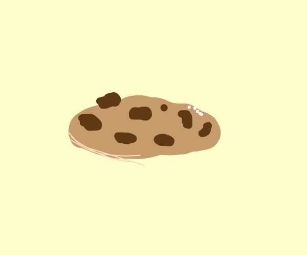 chocolate chip cookeh