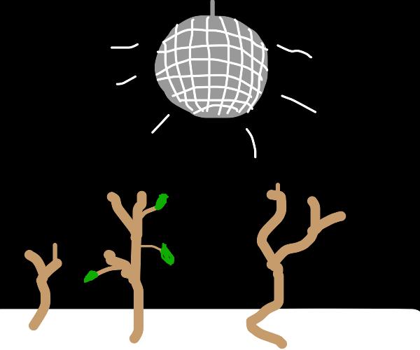 disco party for sticks (?)