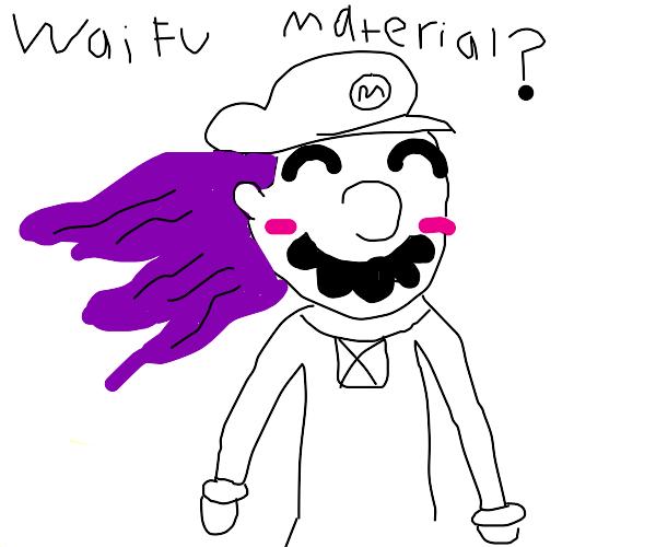 Mario but hes your waifu