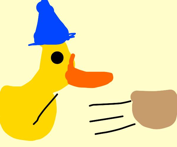 Duck wizard sends flying baskets
